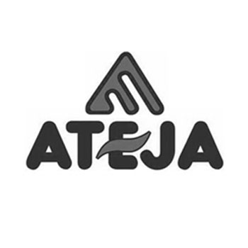 Logo Ateja